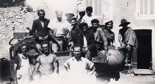 Producteurs de lavande fine depuis 7 générations
