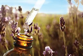 Les secrets de l'huile essentielle
